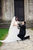 Will You Marry Me ? Groom and bride Royalty Free Stock Image