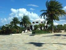 Willa Anguilla. Hotel Caribbean Palm Stock Image