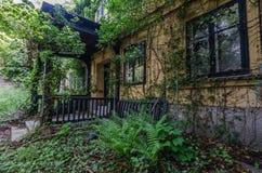 willa z roślinami w lesie zdjęcia royalty free