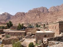 Willabe beduino en montañas Fotos de archivo