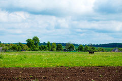 Willage of Belarus agroturism Stock Photo