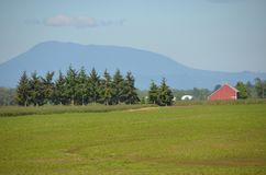 Willamette Valley Farm near Albany, Oregon. This is a farm in Oregon`s Willamette Valley with a large field, red barn, and trees. It is south of Salem and near Stock Photo