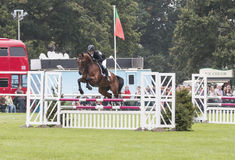 Willem Van Wup Clearing Double Jump royaltyfria bilder