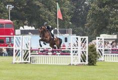 Willem Van Wup Clearing Double Jump Images libres de droits