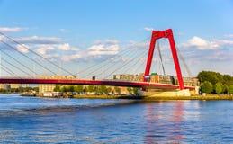 Willemsbrug of Williams Bridge in Rotterdam Stock Afbeeldingen