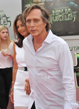 William Fichtner Royalty Free Stock Photography