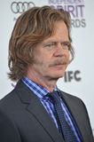 William H. Macy, Royalty Free Stock Photo