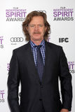 William H. Macy Royalty Free Stock Photography