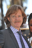 William H Macy Royalty Free Stock Photo