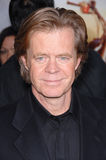 William H. Macy Stock Photos