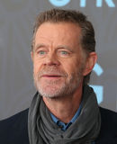 William H. Macy Royalty Free Stock Image