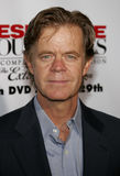 William H. Macy Royalty Free Stock Images