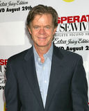 William H. Macy, William H Macy Royalty Free Stock Photography