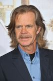 William H Macy Royalty Free Stock Photography
