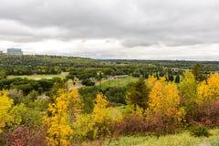 William Hawrelak Park. Aerial view of William Hawrelak Park in Edmonton city, Alberta, Canada Stock Image
