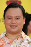 William Hung Stock Photography