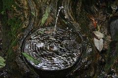 William Ricketts Sanctuary 1 - zet Dandenong, Victoria, Australië op Stock Foto's
