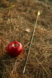 William tell metaphor with red apple and arrow. In the forest Stock Images