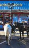 Williams, Arizona, Route 66, parcheggio del cavallo Fotografia Stock