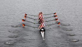 Williams College  wins head of the charles Stock Image
