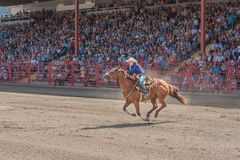 Woman urges horse to next barrel at barrel race. Williams Lake, British Columbia/Canada - July 2, 2016: a barrel racing competitor urges her horse to the second Stock Image