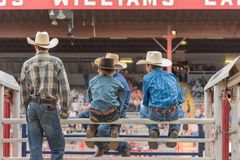 Groups of boys in cowboy hats sit on chutes and watch stampede. Williams Lake, British Columbia/Canada - July 2, 2016:  a group of boys sit on the chutes and Stock Photography