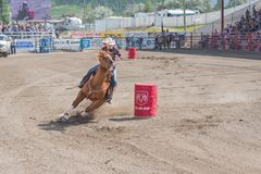 Cowgirl and horse take tight turn around barrel at barrel racing competition. Williams Lake, British Columbia/Canada - July 2, 2016: horse and cowgirl take a Royalty Free Stock Photo
