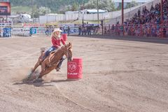 Horse and rider race around second barrel at Williams Lake Stampede. Williams Lake, British Columbia/Canada - July 2, 2016: horse and rider cut around the second Royalty Free Stock Images
