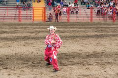 Rodeo clown performs for crowd at stampede. Williams Lake, British Columbia/Canada - July 1, 2016: a rodeo clown entertains the crowds during the 90th Williams Stock Photo