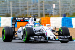 Williams Martini Racing F1 lag, Felipe Massa, 2015 Royaltyfri Bild