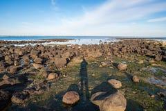 Williams stadstrand en av den berömda stranden i förort av Melbourne, Australien Royaltyfria Foton