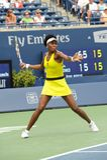 Williams Venus en la taza 2009 (44) de Rogers Imagen de archivo