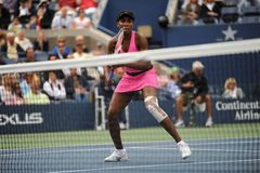 Williams Venus at US Open 2009 (209) Stock Images