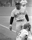 Willie Mays. San Francisco legend Willie Mays.  (Image taken from b&w negative Royalty Free Stock Photography