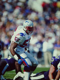 Willie McGinnest New England Patriots Royalty Free Stock Photography