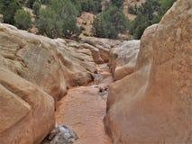 Willis Creek Narrows in Utah Royalty-vrije Stock Afbeelding