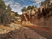 Willis Creek Narrows. Willis Creek runs through a slot canyon in Grand Staircase National Monument Royalty Free Stock Image