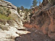 Willis Creek Narrows. Willis Creek runs through a slot canyon, Willis Creek Narrows, in Grand Staircase National Monument Royalty Free Stock Photos