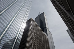 Willis tower Stock Photography