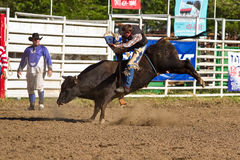 Willits Frontier Days Rodeo Royalty Free Stock Image