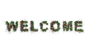 Willkommen der wilden Blumen Lizenzfreies Stockfoto