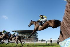 Horse Racing. Willoughby court jumps the last at cheltenham races 1-1-18 Stock Photo