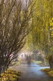 Willow alley with ghosts stock photography
