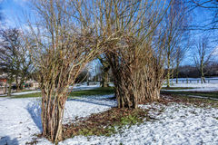 Willow Arch Royalty Free Stock Photo