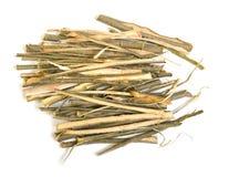 Willow bark medical Royalty Free Stock Image