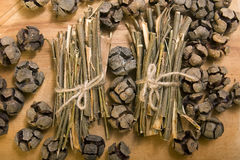 Willow bark medical Stock Image