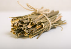 Willow bark medical. White willow bark medical, used in herbal medicine. Salix alba Stock Photos