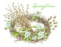 Willow branches bouquet, blooming apple tree flowers royalty free stock images