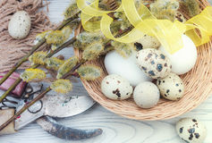 Willow branches and eggs on the table Stock Images