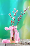 Willow branches with a pink tape in a transparent vase Royalty Free Stock Photos